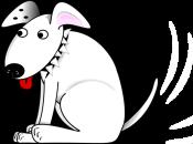 dog tail wag